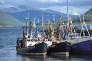 Ullapool.. Great fish & chips..